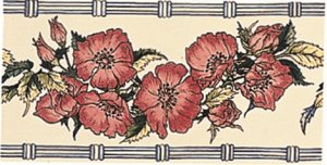 Фото  Corded Poppies Border Red On Brilliant White
