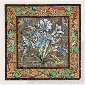 Фото  Blue Iris Brilliant White
