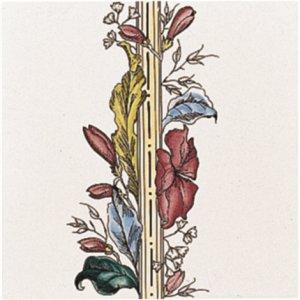 Фото  Plant And Urn Border (Flower RHS) Brilliant White