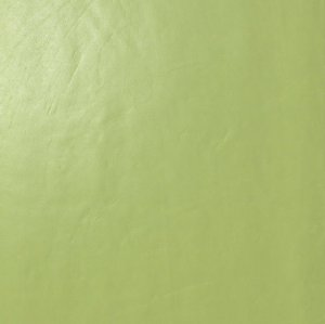 Фото  Acid Green Gloss
